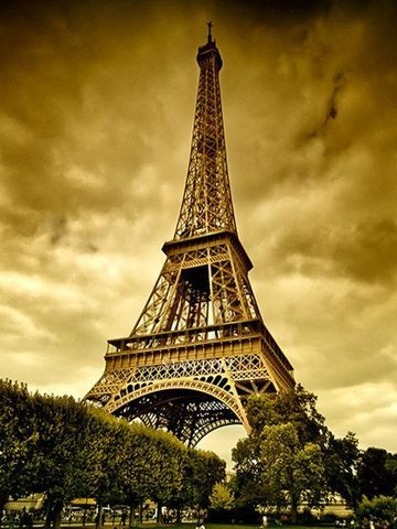 Giraffe  Eiffel Tower Picture on Monumental Competition   Week 1   The Fabulous Ladies  Wine Society