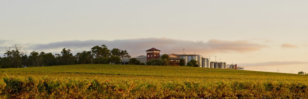 ferngrove_winery-pano-LR